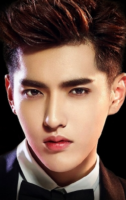 Actor, Writer, Producer, Composer Kris Wu, filmography.