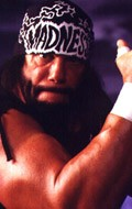 Randy Savage - wallpapers.