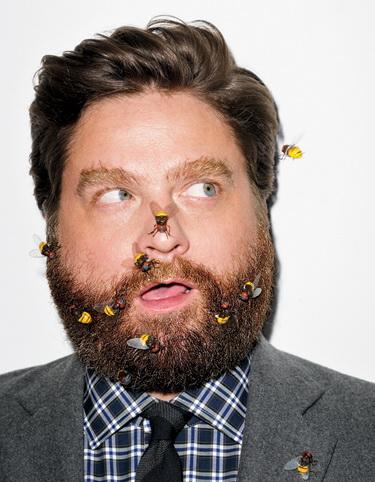 Photo №6658 Zach Galifianakis.