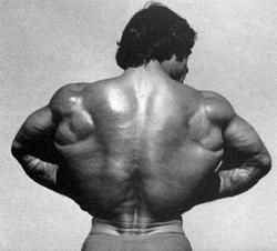 Recent Franco Columbu photos