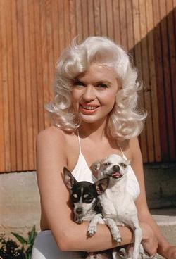 Recent Jayne Mansfield photos