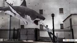 Sharknado 2: The Second One picture