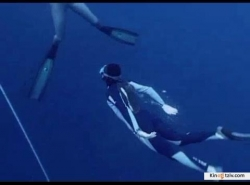 Steve Leonard's Extreme Animals picture