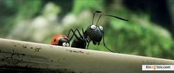 Minuscule - La vallée des fourmis perdues picture