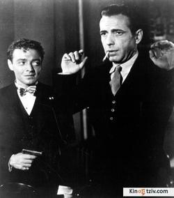 The Maltese Falcon picture