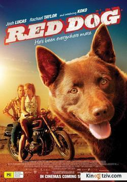 Red Dog picture