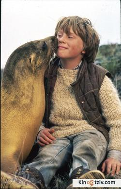 The Golden Seal picture