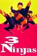 3 Ninjas pictures.