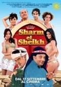 Sharm El Sheik - Un'estate indimenticabile pictures.