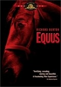 Equus - wallpapers.