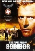Escape from Sobibor - wallpapers.