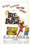 Bye Bye Birdie pictures.