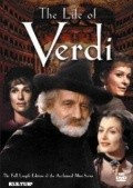 Verdi - wallpapers.