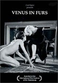 Venus in Furs - wallpapers.