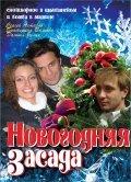 Novogodnyaya zasada - wallpapers.