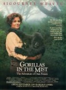 Gorillas in the Mist: The Story of Dian Fossey - wallpapers.