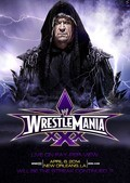 WrestleMania XXX pictures.