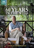 Attenborough: 60 Years in the Wild pictures.