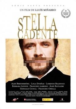 Stella cadente pictures.