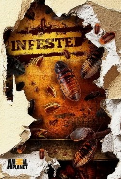 Infested! pictures.