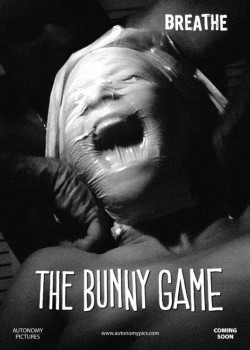 The Bunny Game - wallpapers.