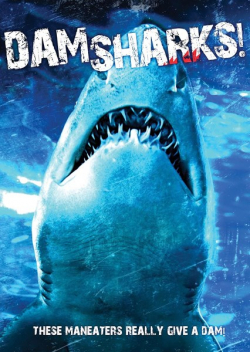 Dam Sharks pictures.