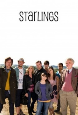 Starlings pictures.