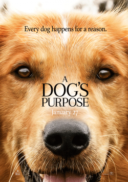 A Dog's Purpose pictures.