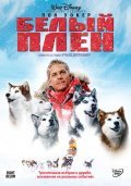 Eight Below - wallpapers.