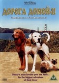 Homeward Bound II: Lost in San Francisco - wallpapers.