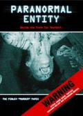 Paranormal Entity - wallpapers.
