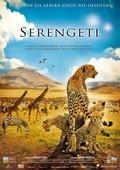 Serengeti pictures.