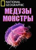 Monster Jellyfish pictures.