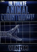 Ultimate Animal Countdown: Venom pictures.