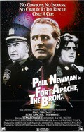 Fort Apache the Bronx pictures.
