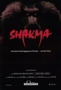 Shakma pictures.