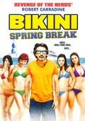 Bikini Spring Break - wallpapers.