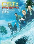CSI: Miami - wallpapers.